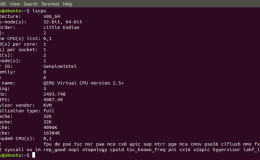 如何在Ubuntu上安装Wine以运行Windows软件