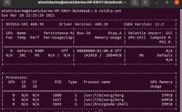 在Ubuntu上配置和管理Nvidia驱动程序