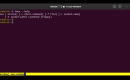 如何在Tmux中管理Windows